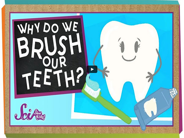 How to brush teeth for kids informational video
